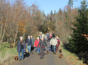 Winterwanderung Braunau, 24. November 2018